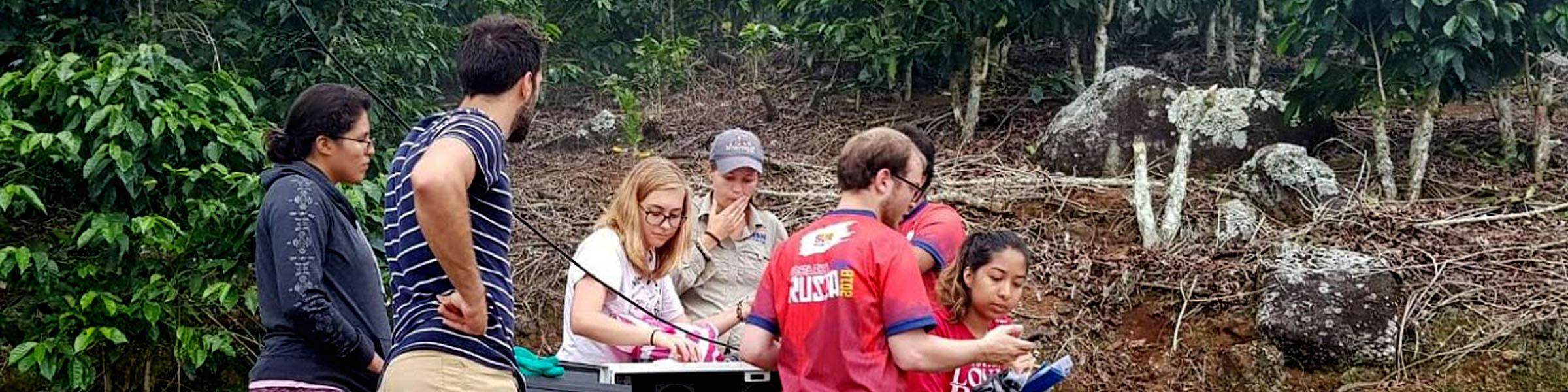 Students from the GREAT project conducting research in Costa Rica.